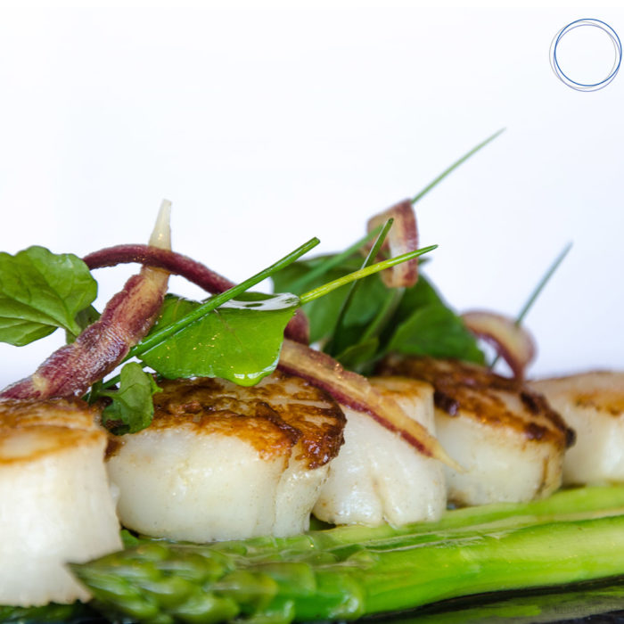 bluesalt-1600x1000-formal-scallops